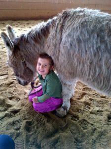 fuzzy donkey